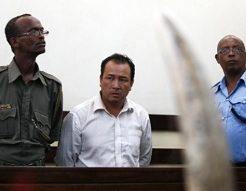 2014年1月28日、モザンビークから中国へ3.4kgの未加工象牙を密輸しようとしていた中国籍のTang Yong Jianがナイロビ空港で逮捕された。有罪が確定し、22万3000ドルの罰金または7年の懲役刑となる。モザンビークにおけるゾウの激減は、中国の密売人が主な原因であると考えられている。