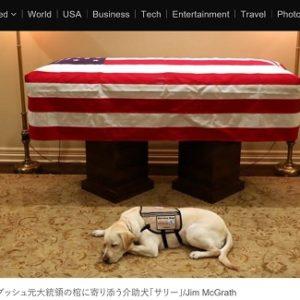 故ブッシュ元大統領の介助犬、海軍病院で新任務「衛生兵」に
